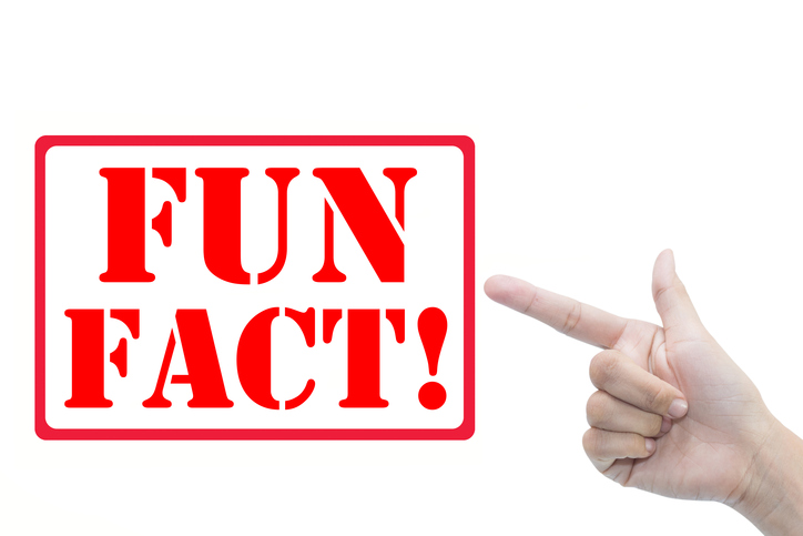 "Ten ""Fun Fact"" Templates for Boring Fuckers Like You"
