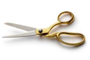 Scissors: We will never know how they work, but thank the lord they do
