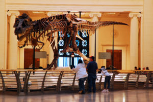 Man Trapped in Museum for 35 Days Due to Government Shutdown